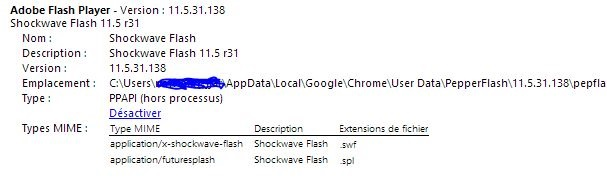 bug-flash-chrome3