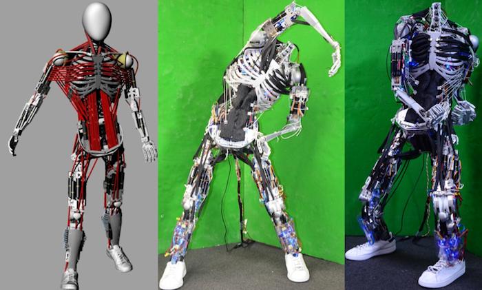 kenshiro-robot-squelette