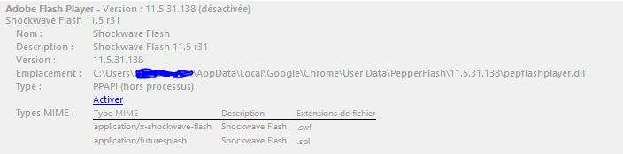 bug-flash-chrome4